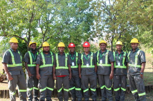 Wood Supply Team
